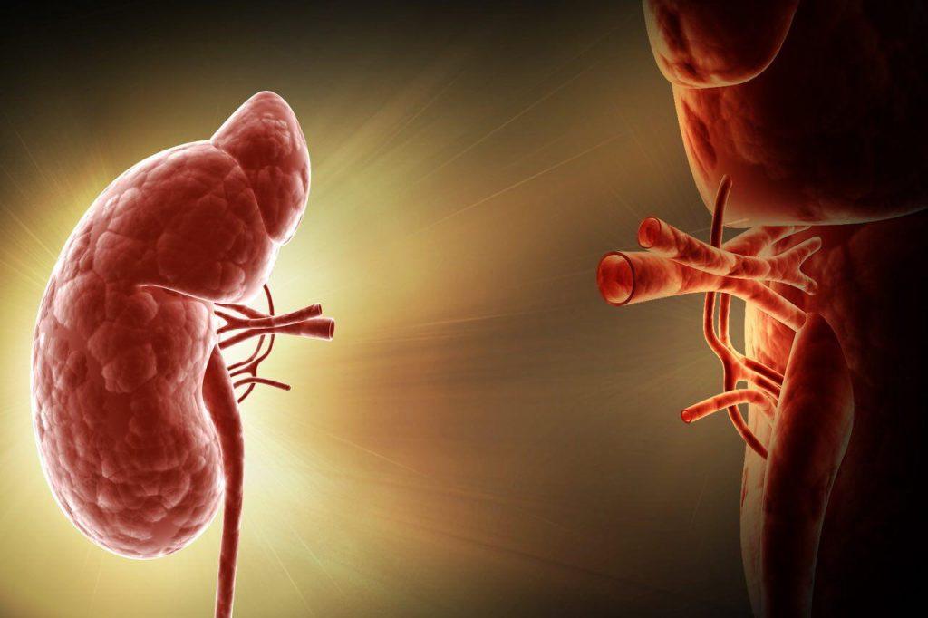انجام جراحی برای کاهش وزن، خطر نارسایی کلیوی را کم میکند